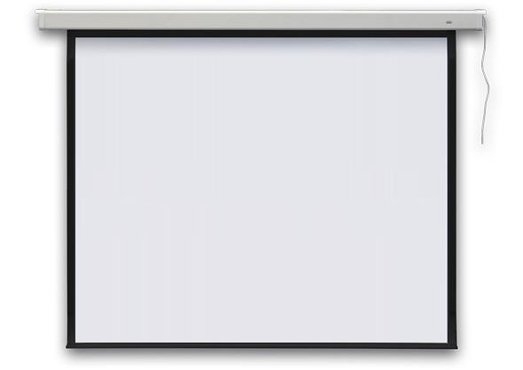 Ekran projekcyjny PROFI elektryczny 254 cm (100